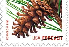 New Forever stamp design